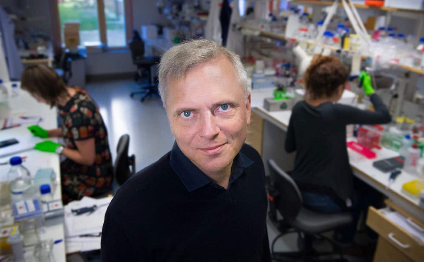 Patrik Ernfors, PhD, Professor at the Department of Medical Biochemistry and Biophysics, Karolinska Institutet, Sweden. CREDIT Gunnar Ask