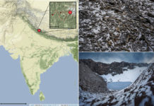 Context of Roopkund Lake. a) Map showing the location of Roopkund Lake. The approximate route of the Nanda Devi Raj Jat pilgrimage relative to Roopkund Lake is shown in the inset. b) Image of disarticulated skeletal elements scattered around the Roopkund Lake site. Photo by Himadri Sinha Roy. c) Image of Roopkund Lake and surrounding mountains. Photo by Atish Waghwase © Harney et al.; Nature Communications