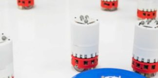 Robots can now learn to swarm on the go