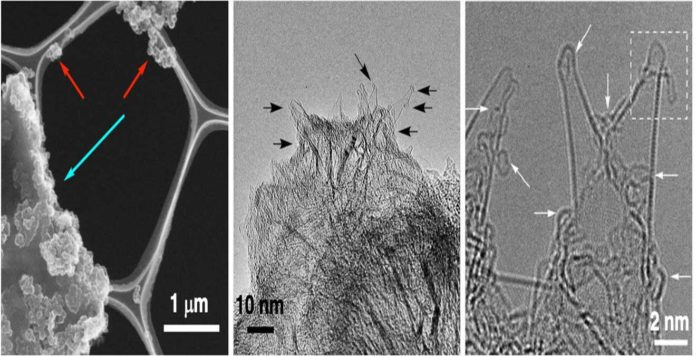 Electron microscope images of the test sample at different magnifications. Image © 2019 Nakamura et al.