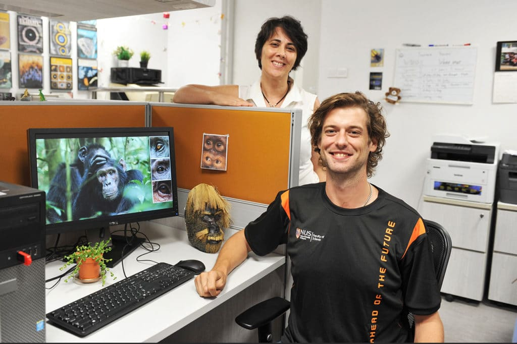 Doctoral student Mr Juan O. Perea-García (front) and Associate Professor Antónia Monteiro(back)from the Department of Biological Sciences at NUS suggest that apes may follow each other's gaze like humans. Credit: National University of Singapore