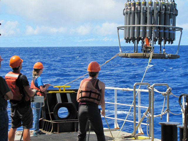 Field samples were collected during a 2015 cruise in the North Pacific. Co-authors Bryndan Durham (center) and Laura Carlson (right) recover the sampling instrument. The gray bottles open and close at specific depths to collect seawater samples.Dror Shitrit/Simons Collaboration on Ocean Processes and Ecology