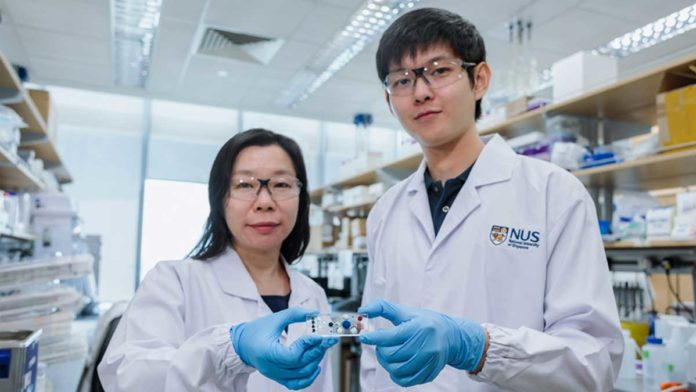 The STAMP technology was invented by Asst Prof Shao (left), doctoral student Noah Sundah (right) and their team at the NUS iHealthtech