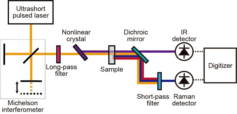 Schematic of complementary vibrational spectroscopy, which is based on a dual-modal Fourier-transform spectrometer with an ultrashort pulsed laser. The Raman measurement is made by Fourier-transform coherent Raman scattering spectroscopy. The infrared measurement is made by Fourier-transform infrared absorption spectroscopy with infrared light generated at a nonlinear crystal. © Takuro Ideguchi, originally published in Nature Communications DOI: 10.1038/s41467-019-12442-9