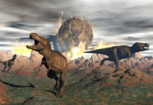 Rock samples record the first day the dinosaurs wiped out