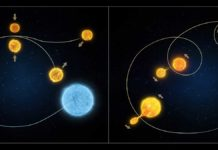 """This illustration demonstrates the two ways that blue stragglers in star clusters form. The illustration on the left shows the collision model where two low-mass stars in an overcrowded environment experience a head-on collision, combining their fuel and mass to form a single hot star. The illustration on the right depicts the """"vampire"""" model consisting of a pair of stars that undergo a transformation, with the lower-mass star draining its larger-mass companion of the hydrogen that fuels its rebirth. Credit: NASA/ESA"""