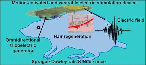 hair regeneration device