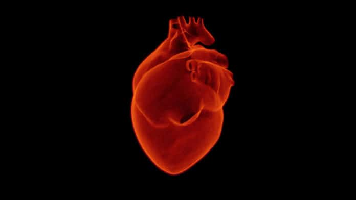AI technology to predict deadly heart attacks