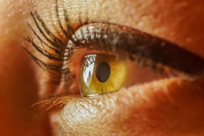 Poor diet can lead to blindness