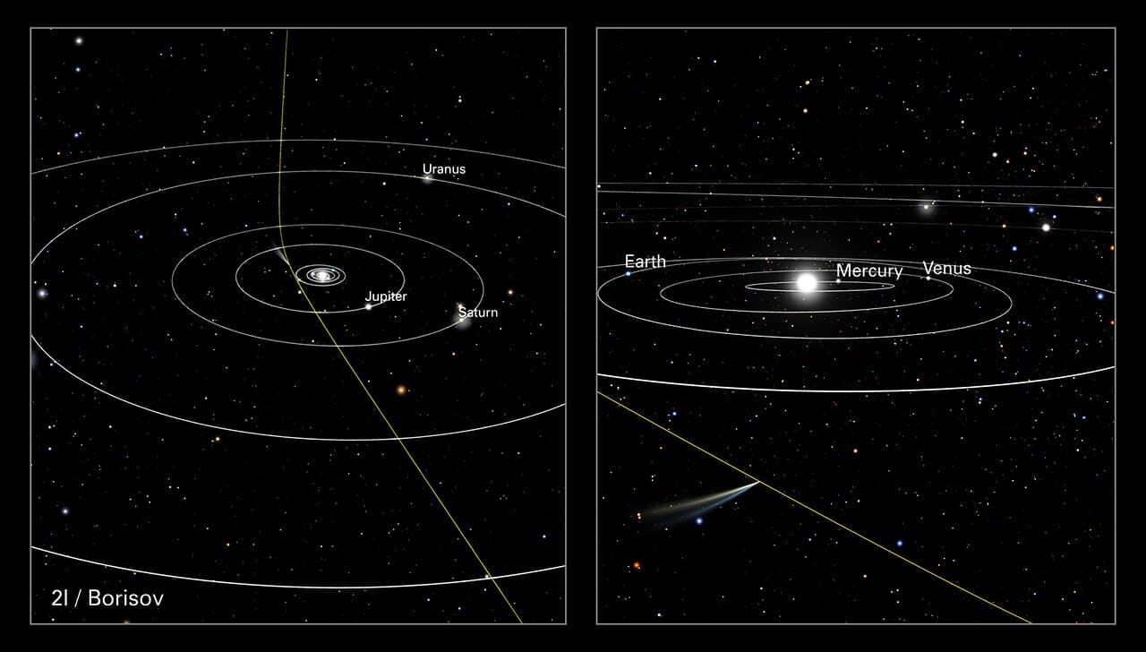 This illustration shows the path of comet 21/Borisov through our Solar System. This visitor came from interstellar space along a hyperbolic trajectory. It is only the second known intruder to zoom through our Solar System (the interstellar object 'Oumuamua was detected in 2017). As the graphic shows, the comet's straight path across interstellar space is slightly deflected by the gravitational pull of our Sun. The comet is travelling so fast, at over 155 000 kilometres per hour, it will eventually leave the Solar System. The panel on the right shows the comet's position relative to Earth when the NASA/ESA Hubble Space Telescope observed it on 12 October 2019, when it was 420 million kilometres from Earth.
