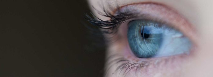 Molecular basis of vision revealed