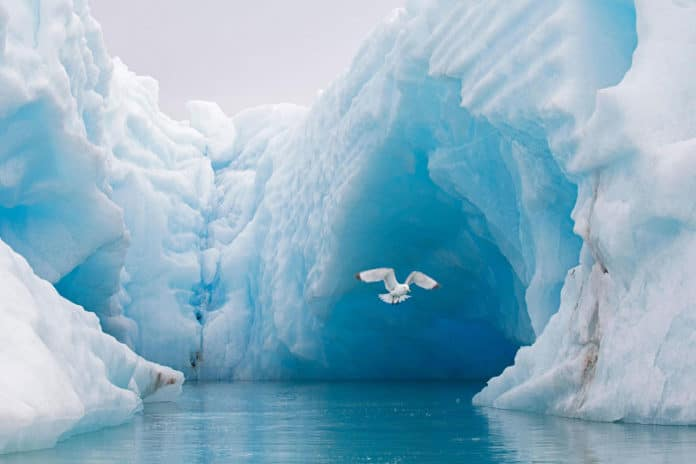 The Arctic Ocean could be ice-free till 2044, warns scientists