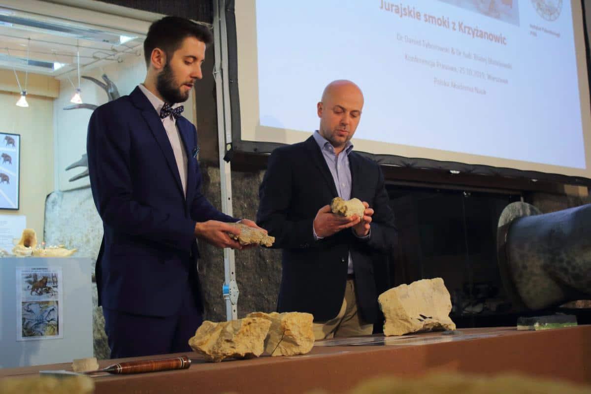 Bones of a huge Jurassic sea predator found in a Polish Cornfield