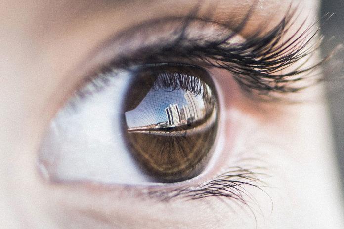 The effect of sleep on eyewitness memory