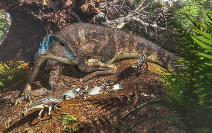 Scientists discovered first baby dinosaurs in Australia