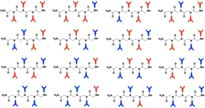 Illustration of peptoid combinations. Each of the metal-binding monomers is represented as a red or blue