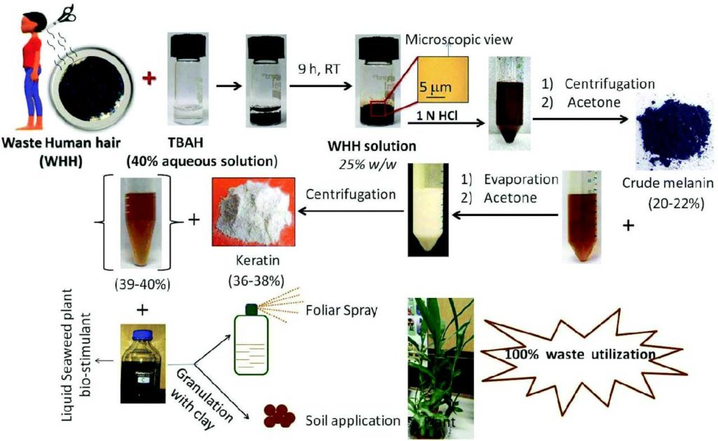 Scientists extract biofertilizer from human hair