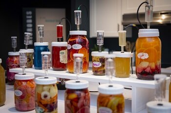 """Rosenstock calls Fermentophone """"open-ended art with a serendipitous result."""" Credit: Worcester Polytechnic Institute"""