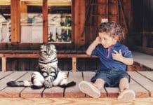 Das Gehirn scheint zwei verschiedene Strukturen zu besitzen, durch die wir uns in andere hineinversetzen können. Diese reifen zu unterschiedlichen Zeitpunkten heran, sodass erst Vierjährige die Denkweise eines anderen nachvollziehen können – und nicht, wie bislang angenommen, bereits Einjährige.