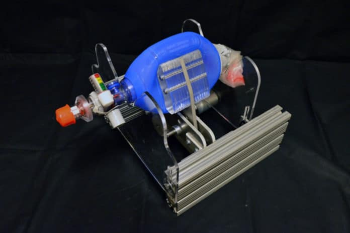 The new device fits around an Ambu bag (blue), which hospitals already have on hand in abundance. Designed to be squeezed by hand, instead they are squeezed by mechanical paddles (center) driven by a small motor. This directs air through a tube which is placed in the patient's airway. Images: courtesy of the researchers