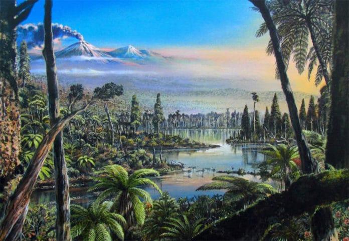Antarctica had rainforests 90 millions years ago