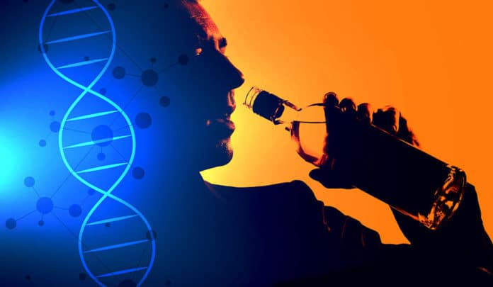 These 29 genetic variants are linked to problematic drinking