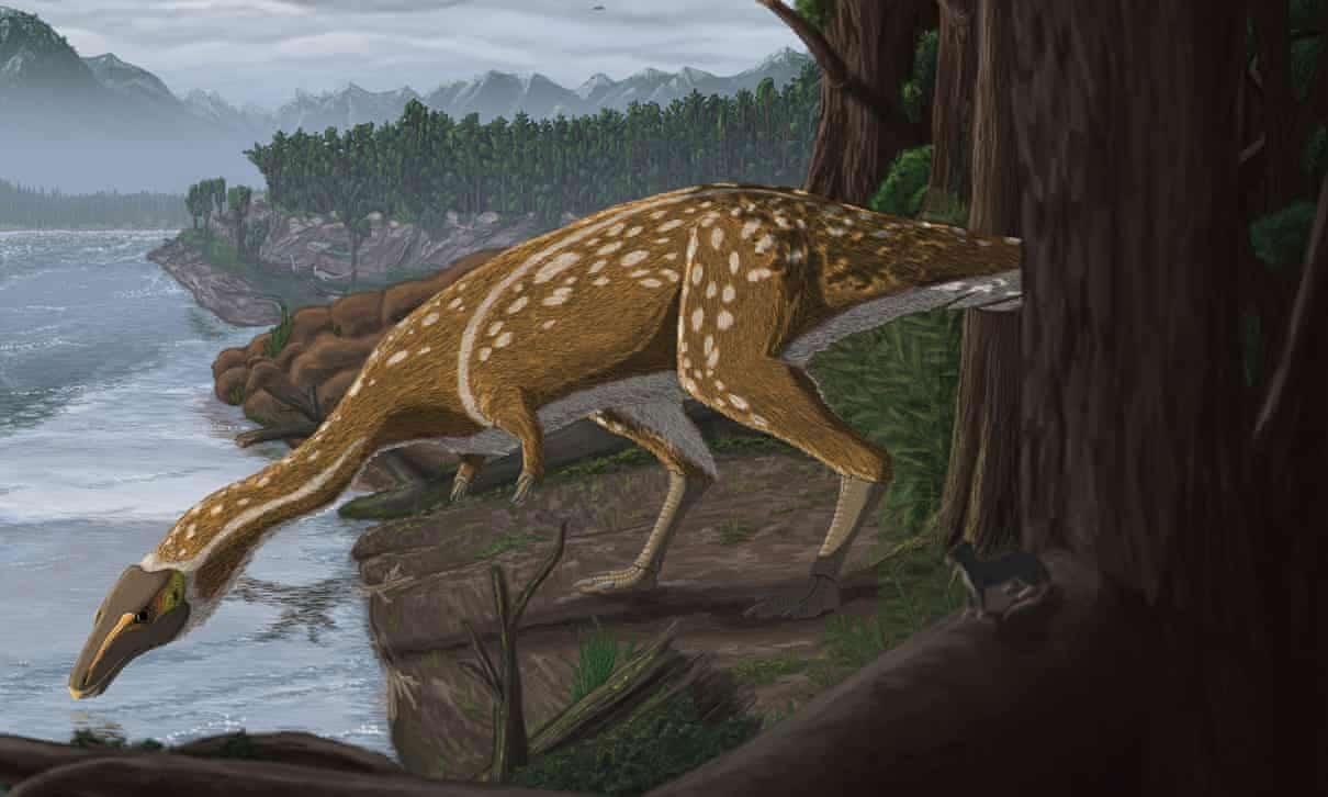 A rare, toothless dinosaur identified in Australia - Tech Explorist