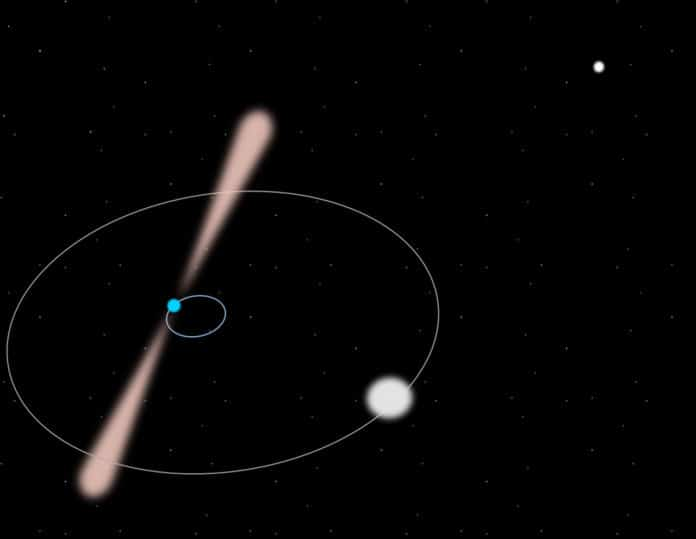Artist view of the pulsar and its closest white-dwarf companion with their orbits and the second companion in the background. The system is not to scale. (Guillaume Voisin CC BY-SA 4.0)