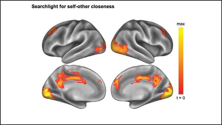 The activity patterns of these brain regions reflect self-other closeness: the closer the relationship, the more the patterns resemble each other