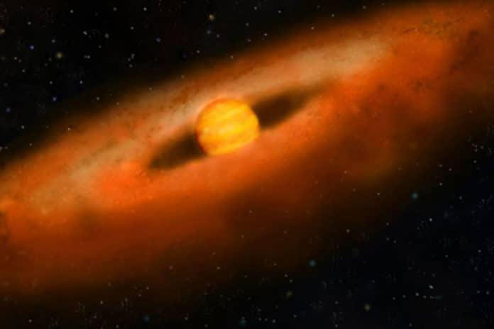 brown dwarf disk
