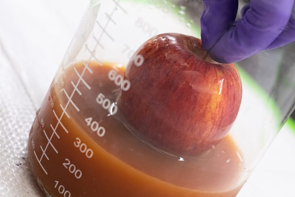 A coating developed at Rice University made primarily with protein from eggs that would otherwise be wasted can be used to extend the freshness of produce.