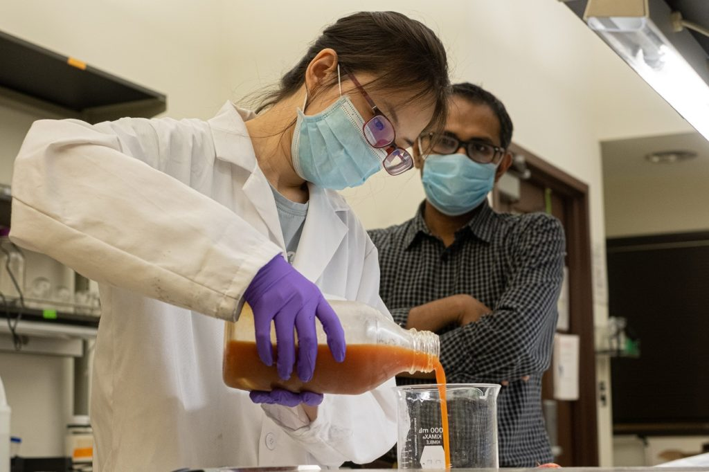 Rice University undergraduate student Yufei (Nancy) Cui prepares a solution based on protein from wasted eggs. The solution can be used as a coating that extends the freshness of fruit and vegetables. With her is Rice research scientist and mentor Muhammad Rahman.