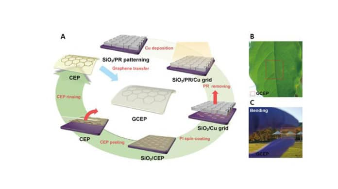 An electrode to improve the stability of the Perovskite Solar Cell