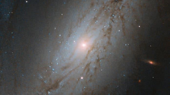 NGC-7513