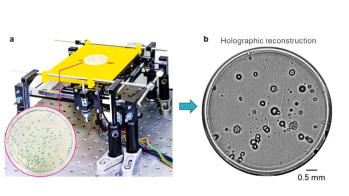 Deep learning-based early detection and classification of live bacteria. a, Schematic of the device. b, Whole plate image of E. coli and K. aerogenes colonies