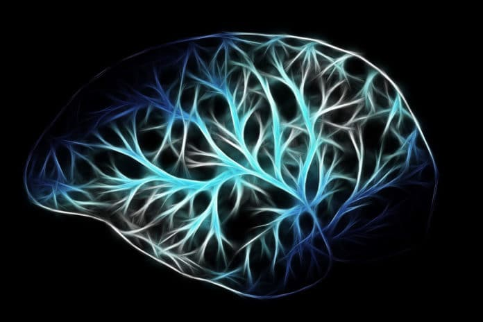 How much oxygen our brain needs?