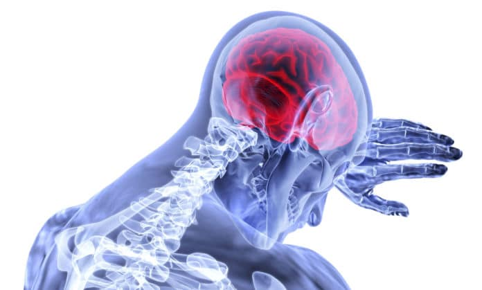 Researchers develop 'Hyperelastic Model' to understand brain injuries