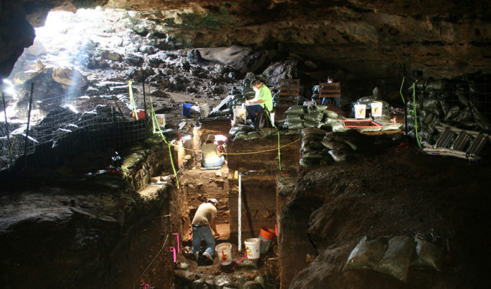 Workers excavating Hall Cave in Central Texas