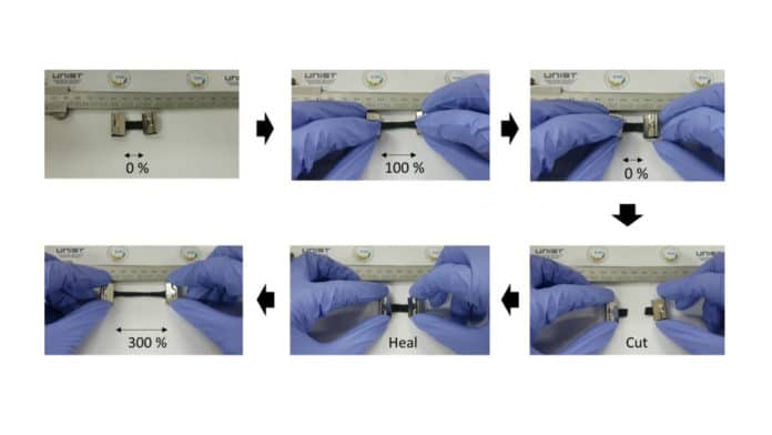 Shown above are the photograph of a TE hybrid film during the self-healing and stretching test