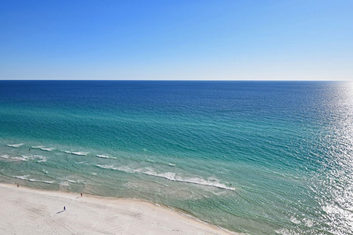 Study sheds light on nutrient levels in the Gulf of Mexico