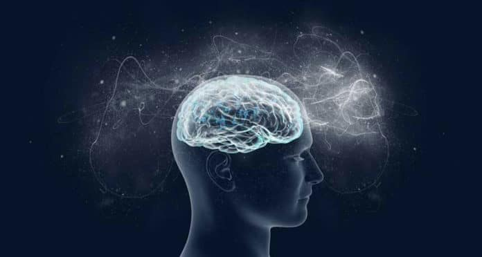 A new theory of consciousness