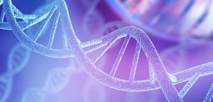 Junk DNA could be rewiring our brain