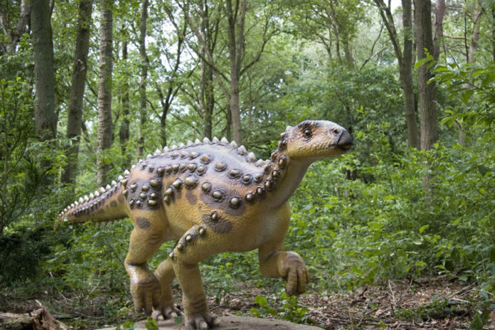 Scientists discovered the first fossilized remains of dinosaur from Jurassic-era