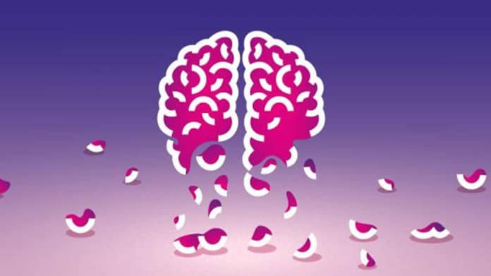 There is a correlation between gut microbiota and Alzheimer's disease
