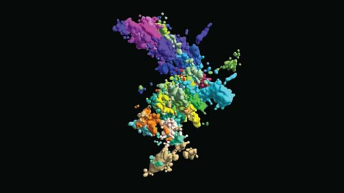This multicoloured image of chromatin was created using multiplexed fluorescence in situ hybridization and super-resolution microscopy