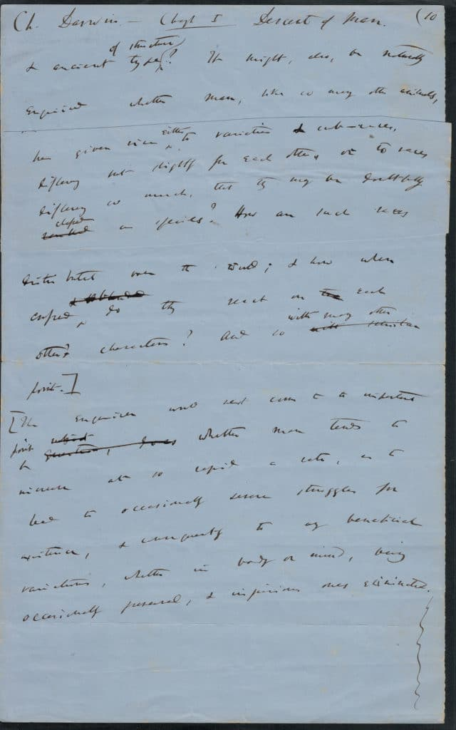 A draft leaf of The Descent of Man (1870). There are a few small differences between this text and the printed edition, for Darwin made additional changes to the work when it was in proofs.