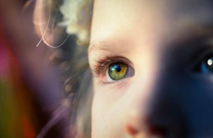 Regenerating damaged nerve fibers in the eye