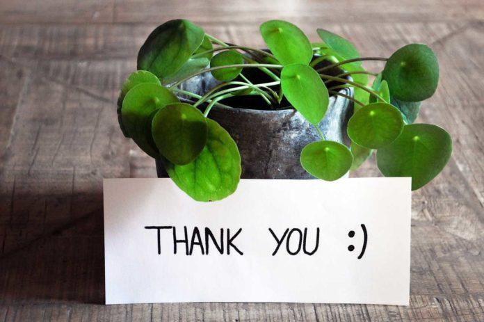 Attitude of Gratitude keeps older people helpful
