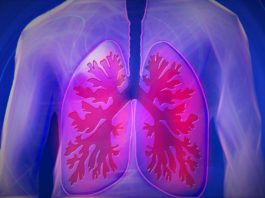 Scientists identified the violent physical processes at work inside the lungs