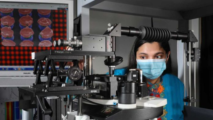 A method for boosting the sensitivity of rapid-detection tests